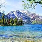 Jenny Lake by Tori Snow