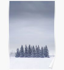 Winterscape Poster