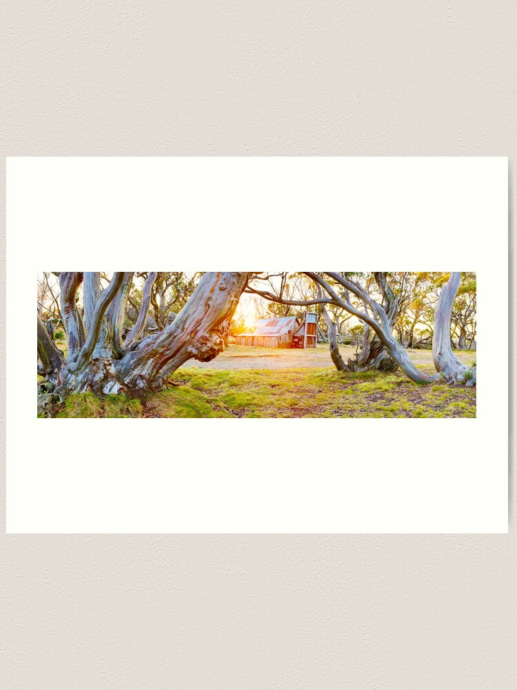 Alternate view of Wallace Hut, Falls Creek, Victoria, Australia Art Print