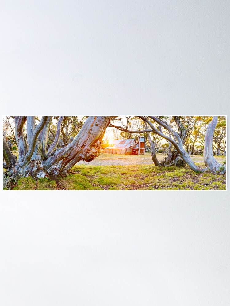 Alternate view of Wallace Hut, Falls Creek, Victoria, Australia Poster