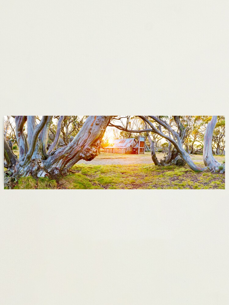 Alternate view of Wallace Hut, Falls Creek, Victoria, Australia Photographic Print