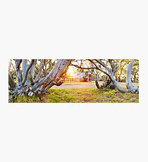 Wallace Hut, Falls Creek, Victoria, Australia Photographic Print