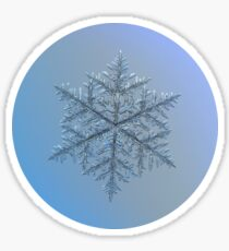 Majestic crystal, real snowflake macro photo Sticker