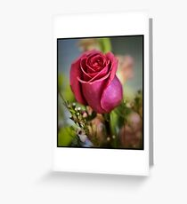 Single Rose For You Greeting Card