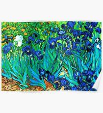 Van Gogh Garden Irises HDR Poster