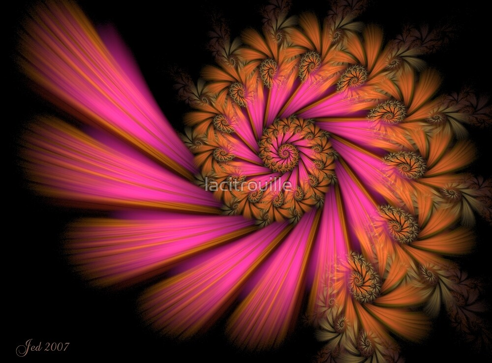Tropical Spiral by lacitrouille