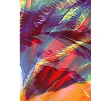 Canopy - Abstract Print  Photographic Print