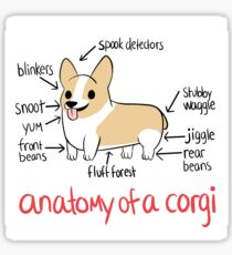Anatomy of a Corgi Sticker