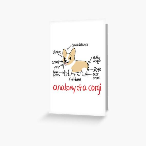 Anatomía de un Corgi Tarjetas de felicitación