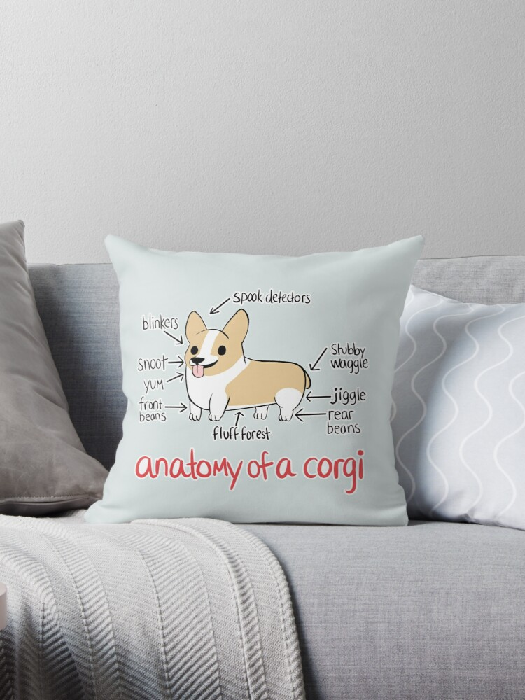 Anatomy of a Corgi by alyssadyerart