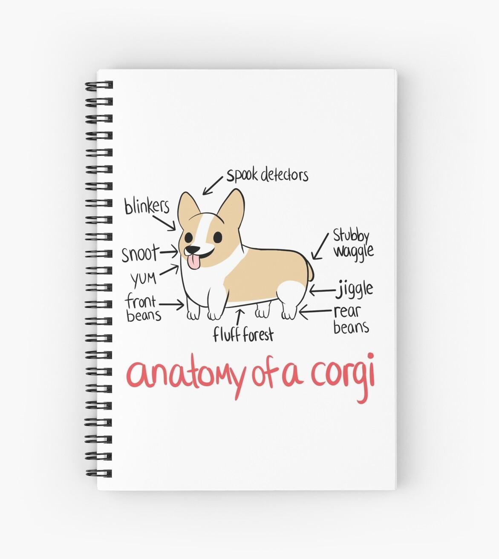 «Anatomía de un Corgi» de alyssadyerart