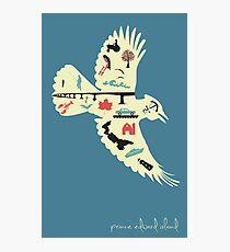 Prince Edward Island Poster Photographic Print
