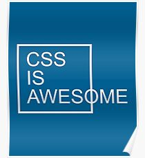 CSS Is Awesome Funny Quote Poster