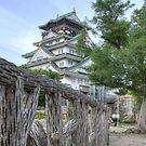Himeji Castle fenced in by Flossy13