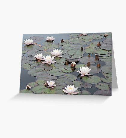 Thinking Of Monet Greeting Card