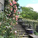 Wonderfully Welsh Floral Steps by CreativeEm