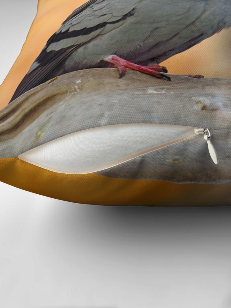 Alternate view of Posing Pigeon Throw Pillow