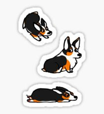 Welsh Corgi Pembrokes Tricolor Sticker