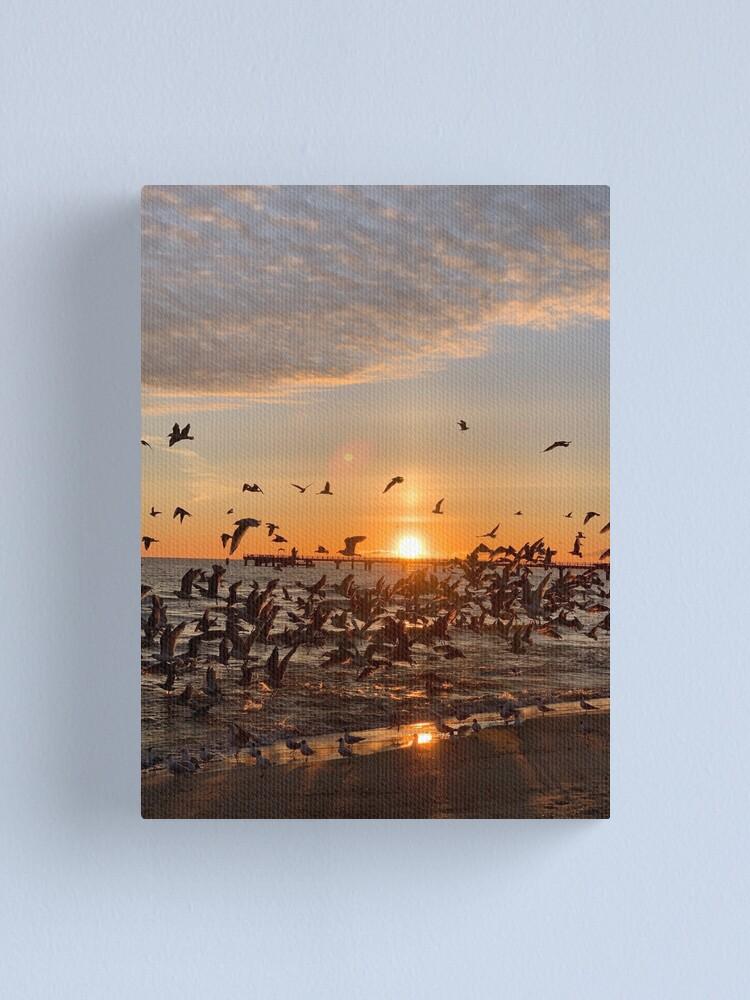Alternative Ansicht von Vogel-Aufgang, Usedom Leinwanddruck