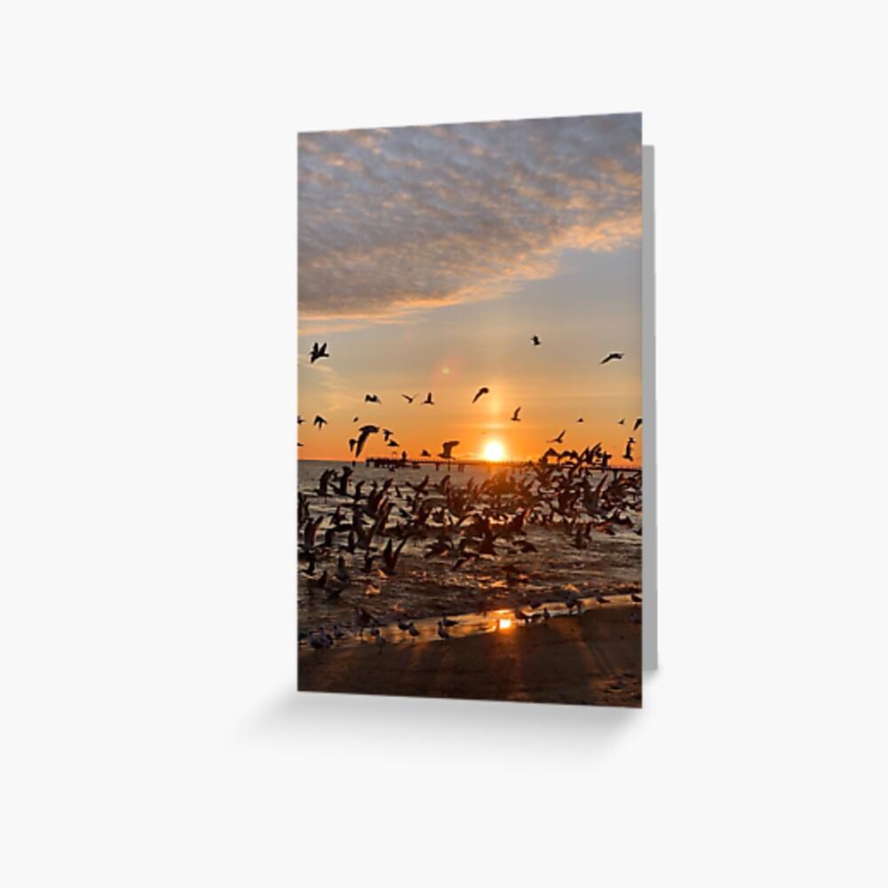 Vogel-Aufgang, Usedom Grußkarte