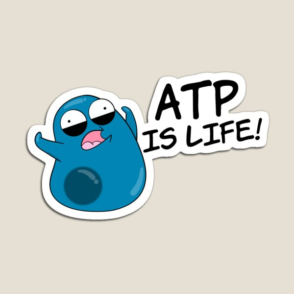 ATP is Life Magnet