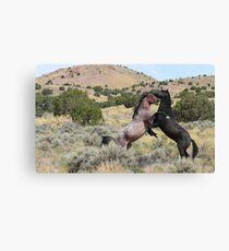 Mustang Waltz Canvas Print