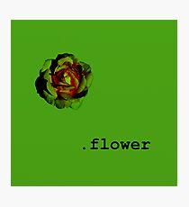 .flower Photographic Print