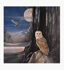 Owl Moon Photographic Print