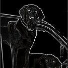 Outline of Labrador by Wayne King