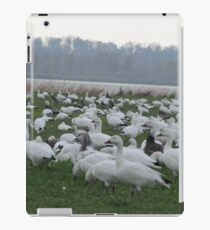 Snow geese family migrations iPad Case/Skin