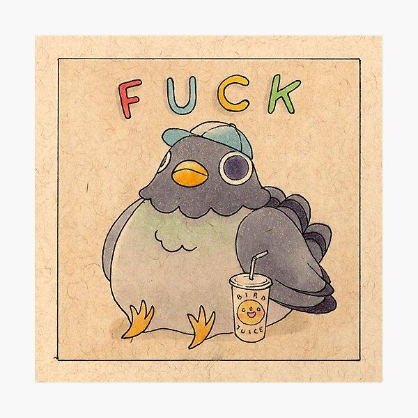 'Fuck' Pigeon 01 Photographic Print