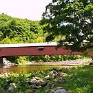 Forksville PA Covered Bridge by Penny Fawver