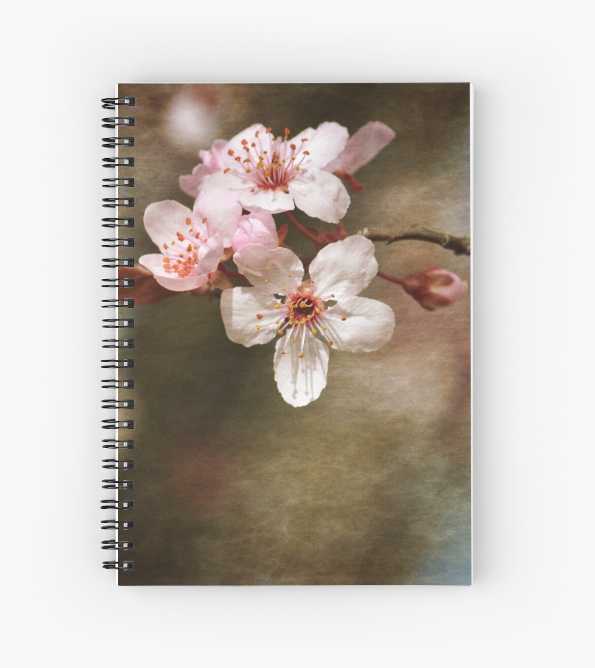 Cherry Blossom Flowers by pencreations