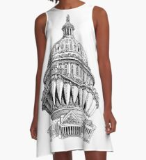 Angry Washington A-Line Dress