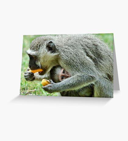 GROWN-UPS ALWAYS GETS THE BEST - Vervet Monkey, (CERCOPITHECUS PYGERYTHRUS) BLOU AAP Greeting Card