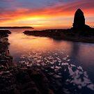 Cape Schanck Dawn by Nick Skinner