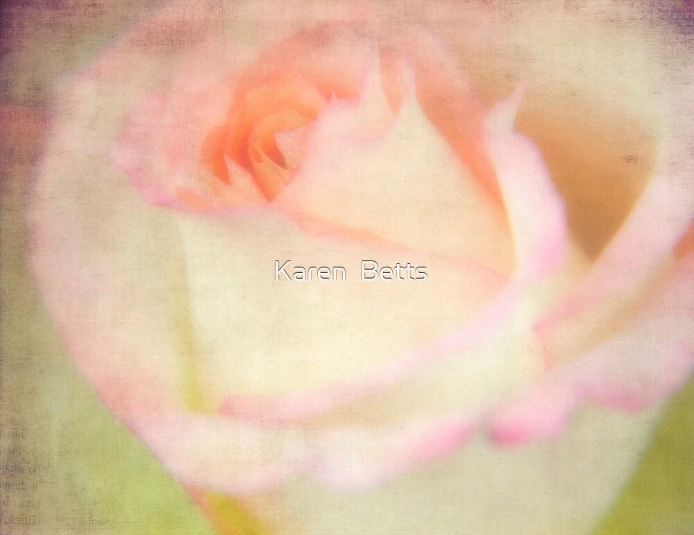 rose by karen betts redbubble. Black Bedroom Furniture Sets. Home Design Ideas