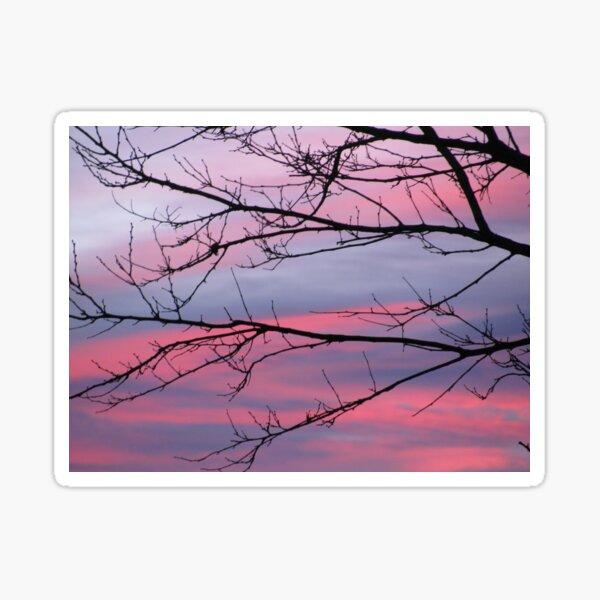December Sunset Sticker