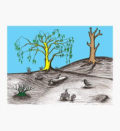 Golden tree succession Photographic Print