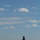 Prairie Lonesome by WildestArt
