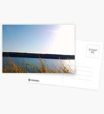 FINGER LAKES CAYUGA LAKE Postcards