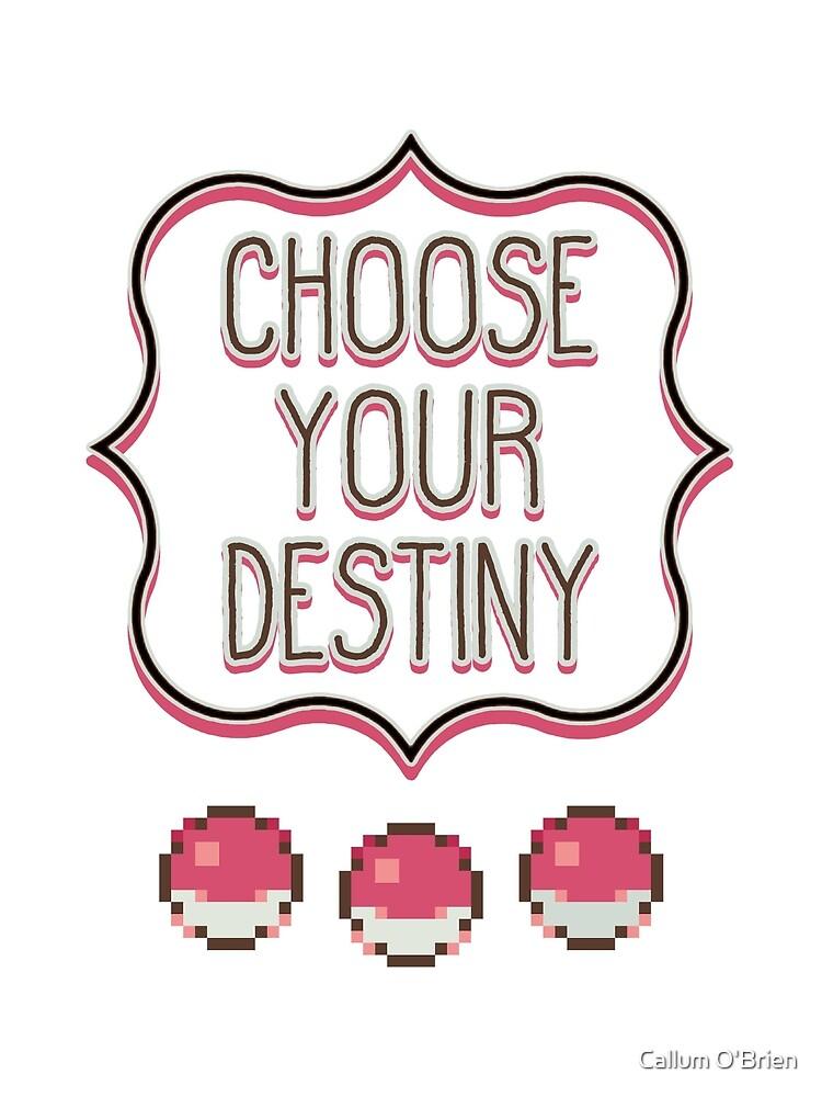 Pokémon - Choose Your Destiny by Callum O'Brien