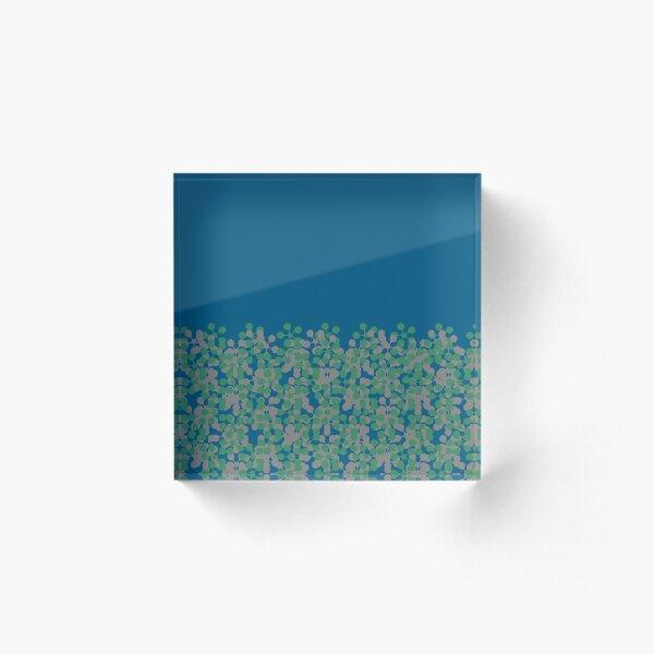 Bilje Acrylic Block