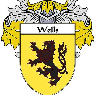 Wells Coat of Arms / Wells Family Crest by IrishArms