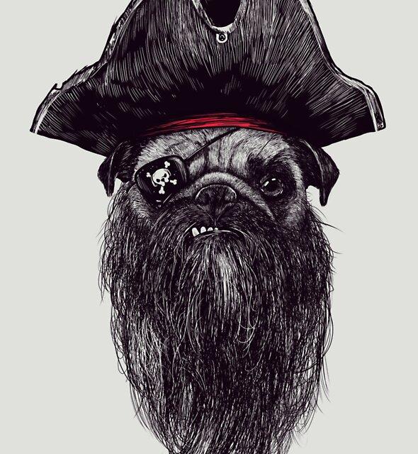 Capt. Blackbone the pugrate by Madkobra