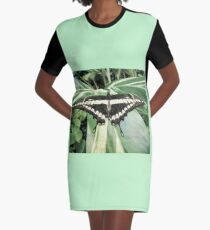 Giant  swallowtail  Graphic T-Shirt Dress
