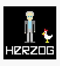 Herzog Pixel Photographic Print