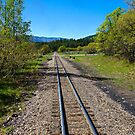 Tracks from Durango  by Robert Meyers-Lussier