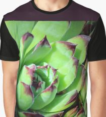 Hen-and-Chicks - Jovibarba heuffelii Graphic T-Shirt