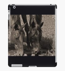 down by the swamp iPad Case/Skin